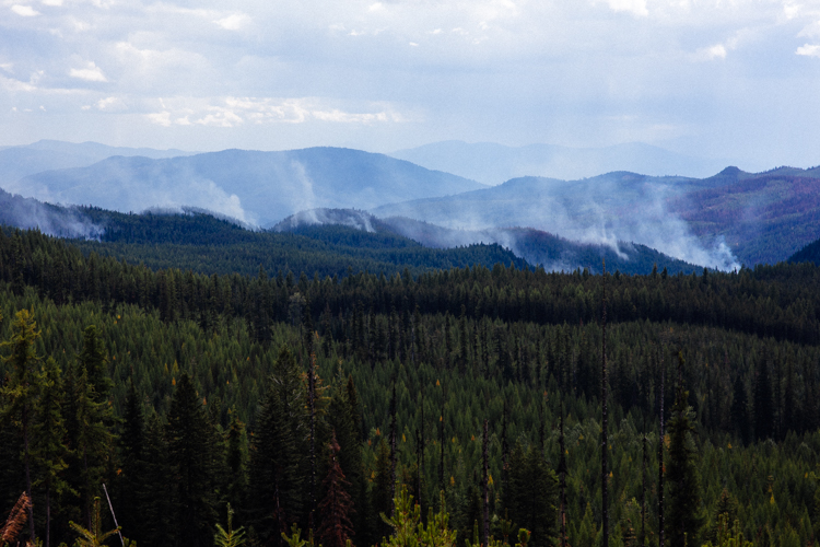 The Gold Hill fire burns in Kootenai National Forest in September 2018.